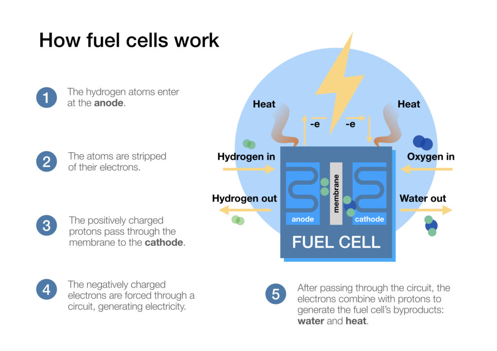 Infographic showing how fuel cells work